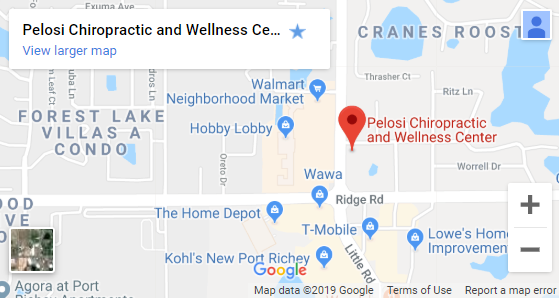 Map of New Port Richey Chiropractors