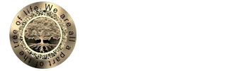Chiropractic New Port Richey FL Pelosi Chiropractic and Wellness Center